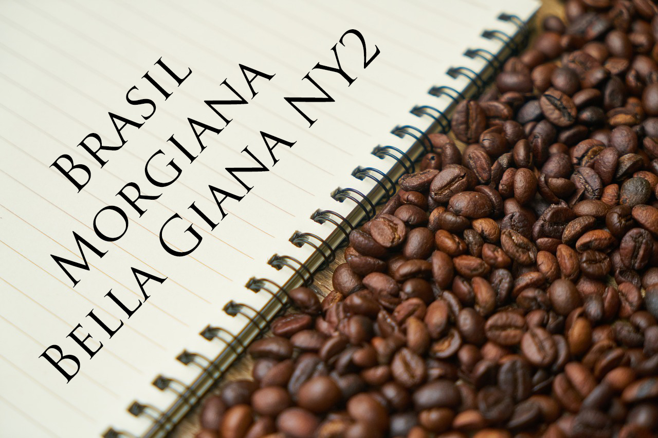 Pražená káva - Brasil Morgiana Bella Giana NY2, 17/18 pulped natural